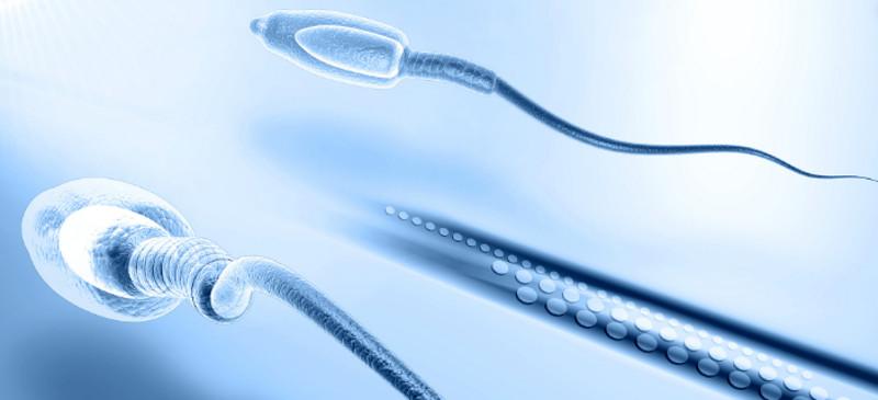Biopsia testicular en DF